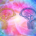 Eje Intestino-Cerebro